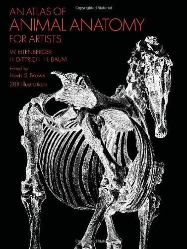 An Atlas of Animal Anatomy for Artists by W. Ellenberger (Softcover)