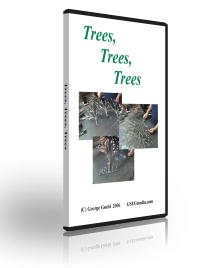 Trees, Trees, Trees: Making Copper Trees with George Goehl (DVD)