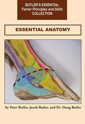 Essential Anatomy (of the Horse) DVD